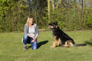 Aron von der Bergstätte -  Hundeführerin: Ulla Thaler
