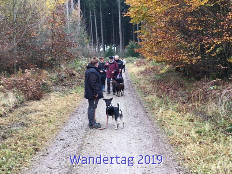20191111_Wandertag_2019_002_ergebnis