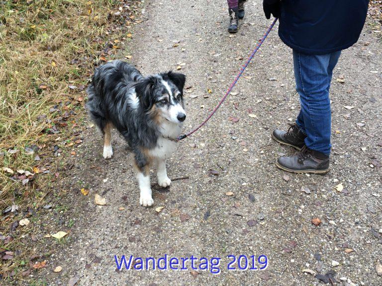 20191111_Wandertag_2019_009_ergebnis